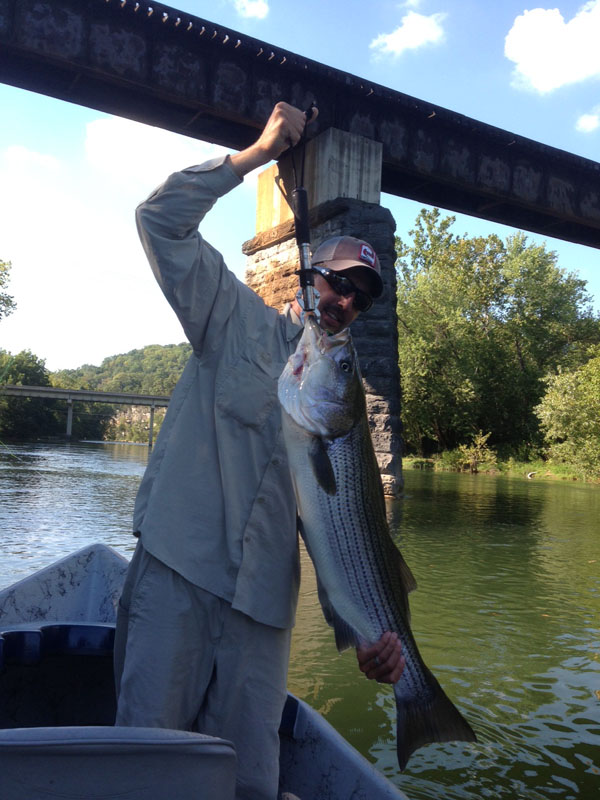 Watauga River fly fishing